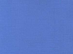 blue - cloth pattern